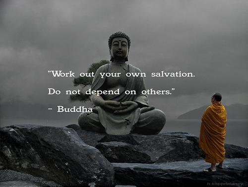 8028950810 buddha quote 23